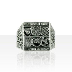 chevali re argent des 6 pays celtes gm bijoux kelt. Black Bedroom Furniture Sets. Home Design Ideas
