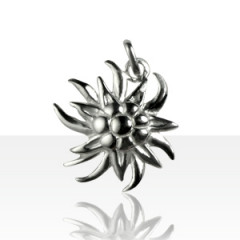Pendentif Argent EDELWEISS